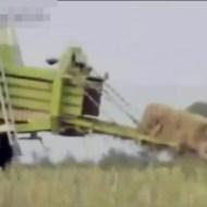 【神動画】一瞬でスポンジボブになれる機械発見したwww