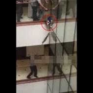 【閲覧注意】猫救出失敗・・・9階から落下して死亡・・・