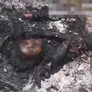 【閲覧注意】焼き殺され炭になった少女がこれ・・・ 動画有り