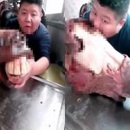 【グロ動画】ロバの頭を丸齧りするリアルトリコが現われる・・・www