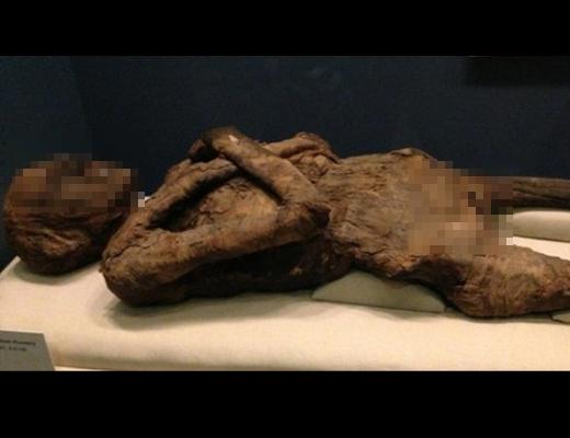 【エログロ】史上最強の熟女マニア、2500歳以上のミイラをレ●プして逮捕(アメリカ)