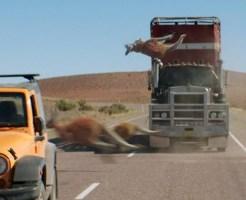 【衝撃映像】パーン!と血飛沫が(●_●)高速走行中のレーシングバギーがカンガルーと衝突してしまう。