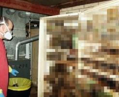 【閲覧注意】5年前に壊れて放置してた冷蔵庫を開けてみた・・・