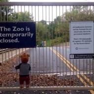 【閲覧注意】幼い子供が遊んでた自動の鉄門は子供ごと収納・・・