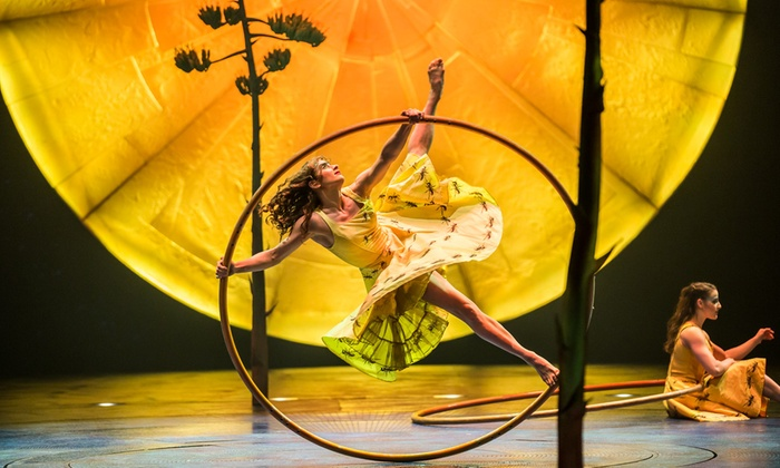 Cirque du Soleil Presents \