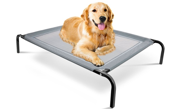 Elevated Steel Framed Pet Bed Groupon Goods