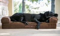 Eddie Bauer Large Couch Dog Bed | Groupon Goods