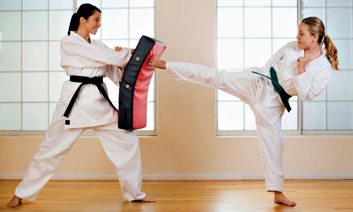 Boy Kick Girl Wallpaper Ernie Reyes World Martial Arts Amp Focus Fit Johnstown