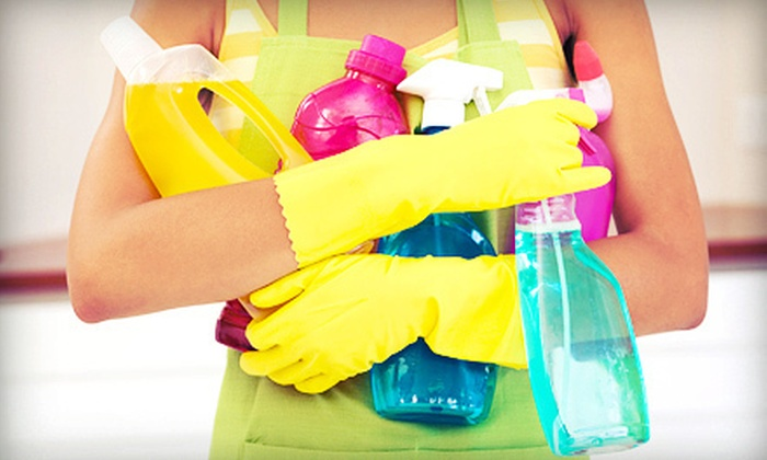 1 Ladies Cleaning Services in - Fort Lauderdale Groupon
