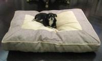 Eddie Bauer Linen Gusset Dog Bed | Groupon Goods