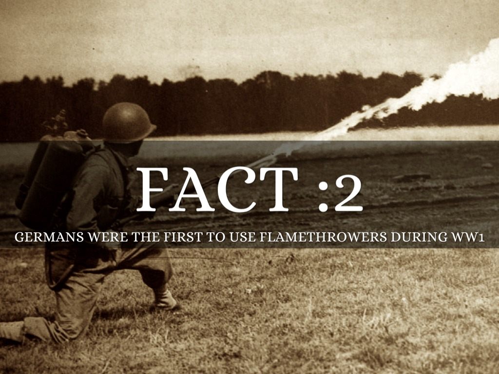 Facts About Wwi 25 Facts World War 1 By Maria Rodriguez