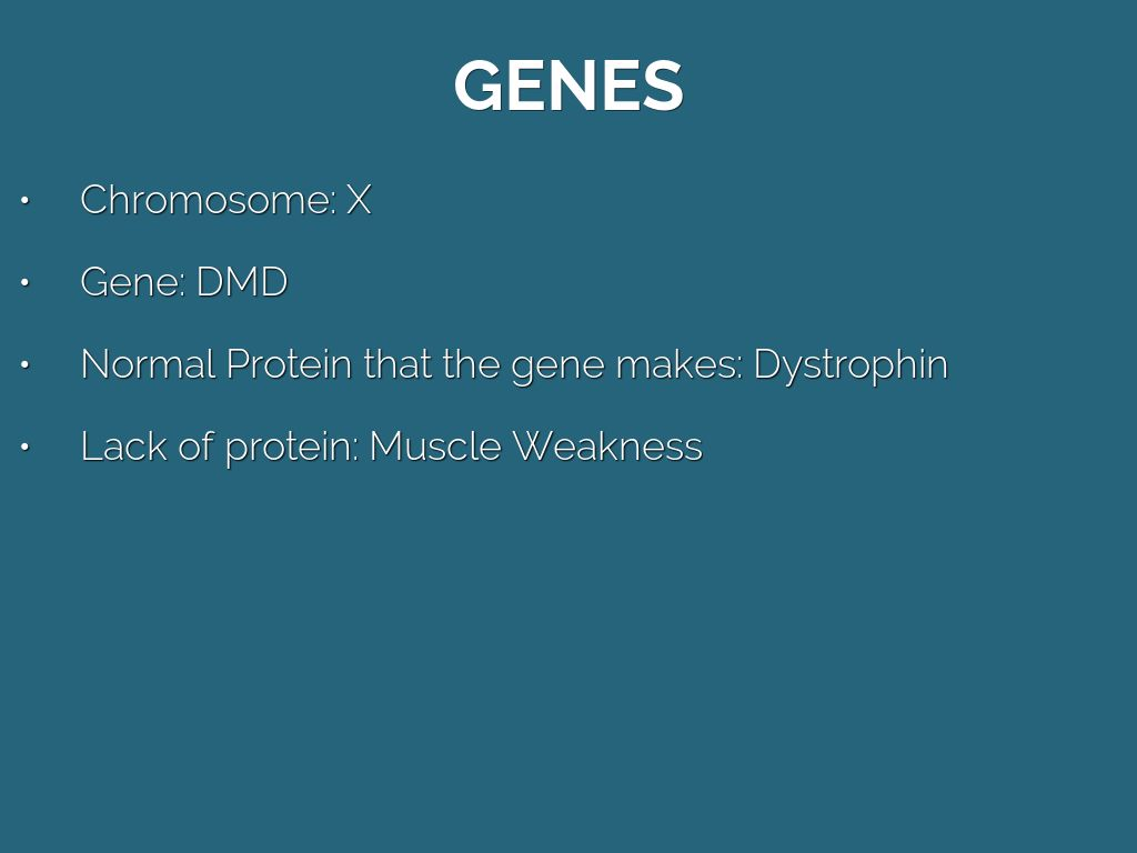 Duchenne Muscular Dystrophy Chromosome Duchenne Muscular Dystrophy