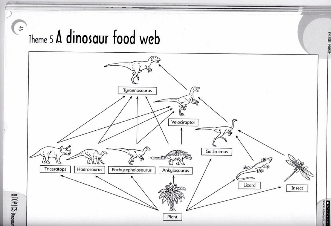 Dinosaur Food Chain Diagram - Online Schematic Diagram •