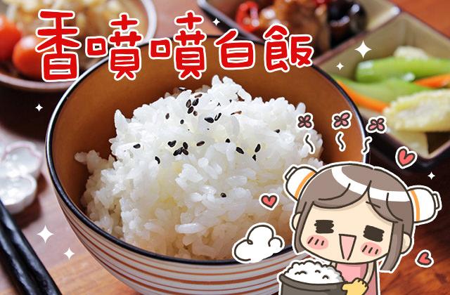 小廚娘日常料理 ▌煮出香氣透鼻、Q彈的白米飯 (影音
