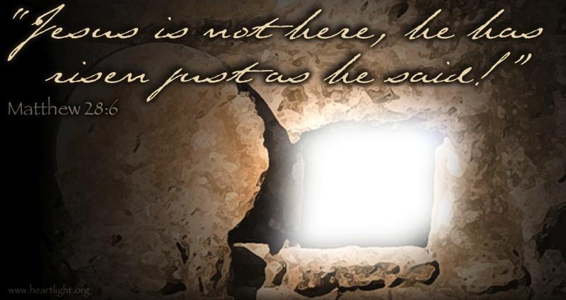 Jesus Bible Quotes Wallpaper Matthew 28 6 Illustrated Quot Jesus Is Not Here