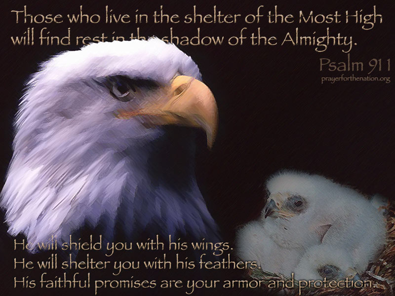 In the Shadow of His Wings\ - the shadow of the almighty ministry