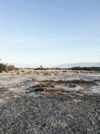 Furnace Creek Campground, Death Valley, CA: 11 Hipcamper ...