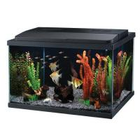 Easy maintenance fish tank empty repurposed archives for How to maintain fish tank