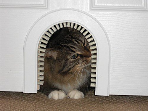 8 Handsome Ways To Hide Your Cat39s Litter Box Huffpost Life