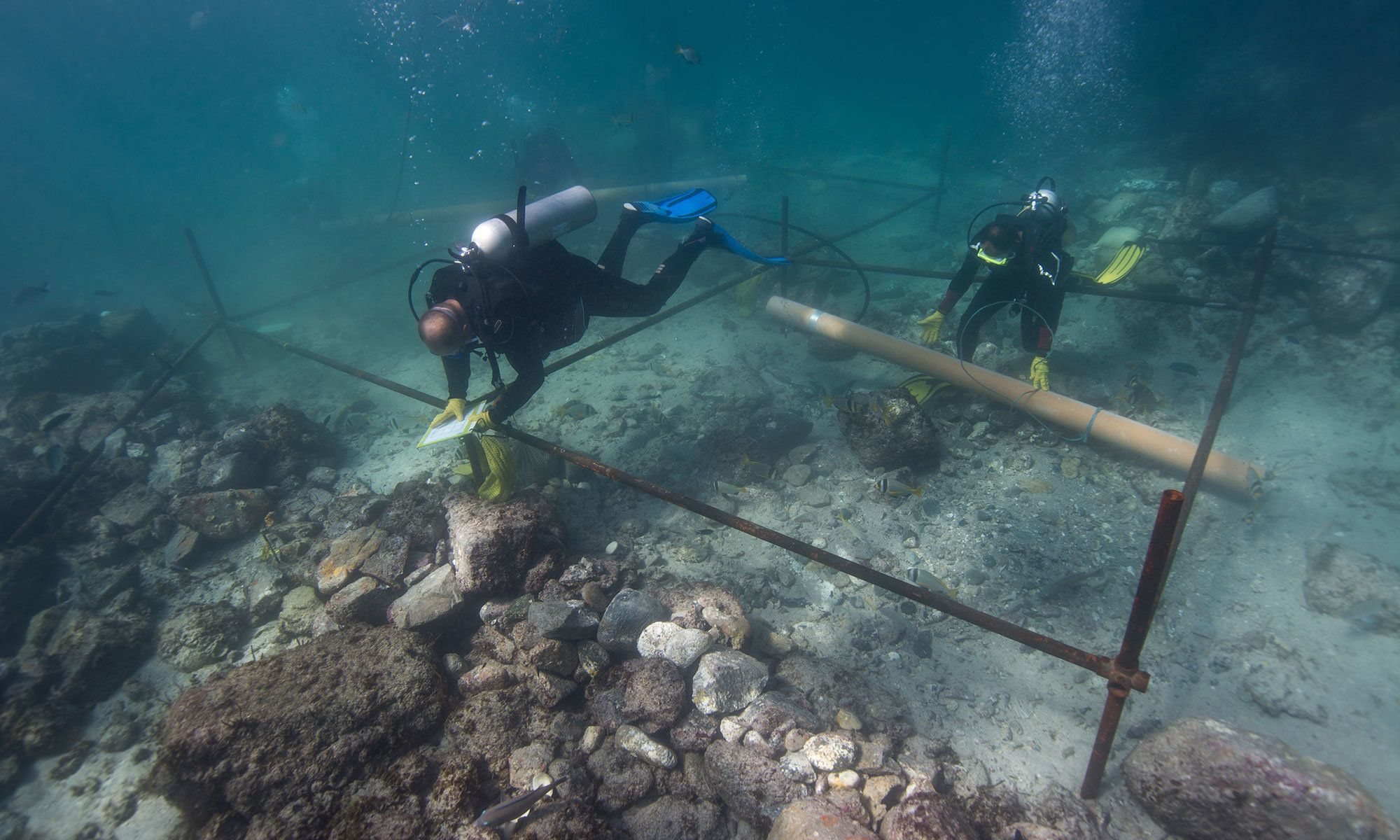 Vasco Playback Archeologists Discover Treasures In Vasco Da Gama Shipwreck Off