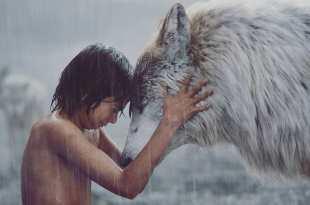 明白了無法掌控所有事後,就不再恐懼。—《與森林共舞》—我們用電影寫日記