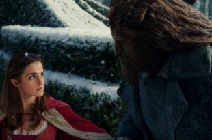 你知道《美女與野獸》中的玫瑰花,象徵了什麼意義嗎? - 我們用電影寫日記