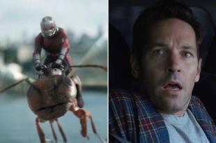 《蟻人與黃蜂女》片尾彩蛋洩漏《復仇者4》劇情?關鍵竟然是這隻巨型螞蟻! – 我們用電影寫日記