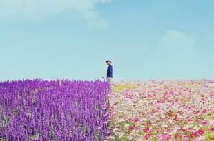 「個性不合還能幸福嗎?」其實百分之80的人都沒搞清楚:磨合跟不適合是兩回事 – 愛過以後忘記的事