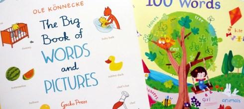 [硬頁工具書] 小小孩的大尺寸生活英文百科書|The Big Book of Words and Pictures