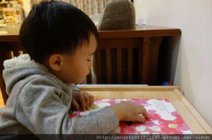 [同大爺書報]適合1-3歲硬頁書單(七)-我見過最美的翻翻書●Little Tree●