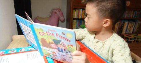 [同大爺私物]引導孩子觀察力●On the Farm●有趣的磁鐵記憶桌遊書盒