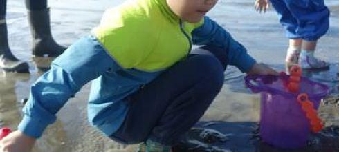 【親子遊】穿著Duukies輕便鞋去新竹香山濕地找螃蟹