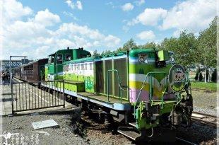 日本鐵道攻略,富良野、美瑛Norokko─日本最慢的景觀列車