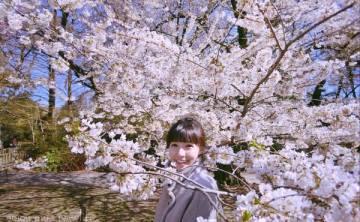 [美國-紐約]布魯克林植物園Brooklyn Botanic Garden賞櫻行程 異地日本櫻花季 自由行必去景點推薦 ♥ 小Connie愛夢遊。遊記
