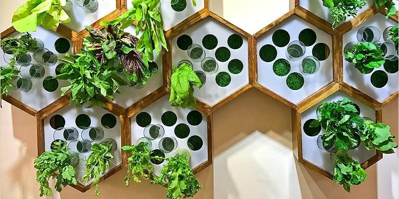 台中北屯滷味 | 蜜蜂慢食(昌平路一段)。很不一樣的滷味店,食材新鮮、無過多調味、自製湯頭多選擇,值得細細品嚐。
