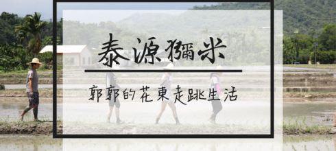 【台東遊記】泰源幽谷獼米稻作體驗~自產自銷的稻米產銷班小農有機米