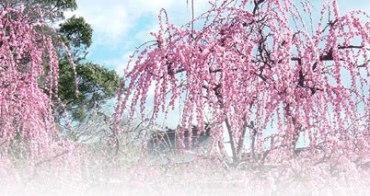 日本三重縣、奈良縣、京都市 秋冬魅力之旅講座