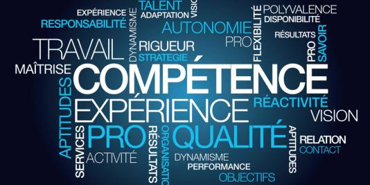 organiser ses competences sur un cv