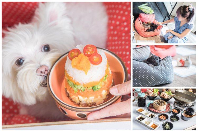 [新北林口]領養不棄養,超有愛的寵物餐廳,浪浪的幸福之家~豆喜家寵物餐廳-林口三井店