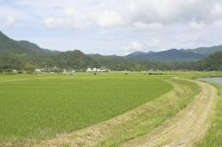 """「島根の土地300坪、無料であげます」–無料・格安品の掲示板""""ジモティー""""がすごい"""