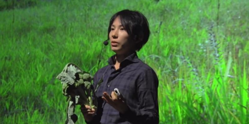 「虫が付いてる野菜は美味しい」は嘘 エンジニア思考で考える新しい農業