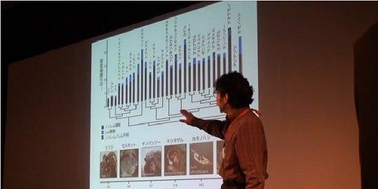 The mystery of sleep Masashi Yanagisawa TEDxTsukuba_gazou2