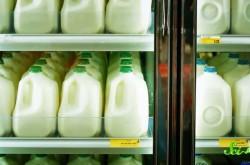 心置きなくミルクを飲める大人は30%だけ? 成長の過程で失われるラクターゼとは
