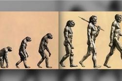 科学の進歩で明らかに 実はウソだった3つの俗説