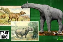 恐竜の絶滅後、なにが起こった? 地球の生態系の歴史を振り返る