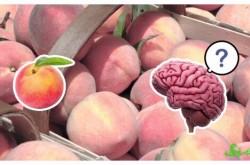 桃を食べると口がかゆくなるのはなぜ?