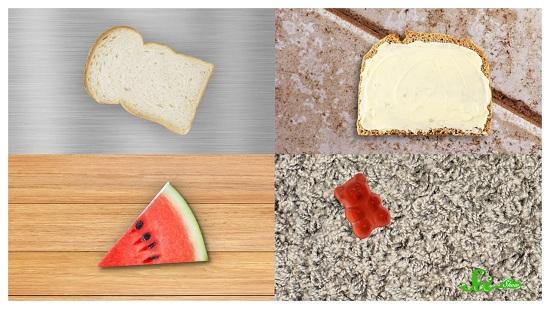 食べ物を落とした時の「3秒ルール」は無意味だと判明