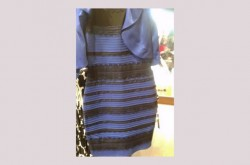 """結局のところ、""""例のドレス""""はなぜ2通りの見え方をしたのか"""