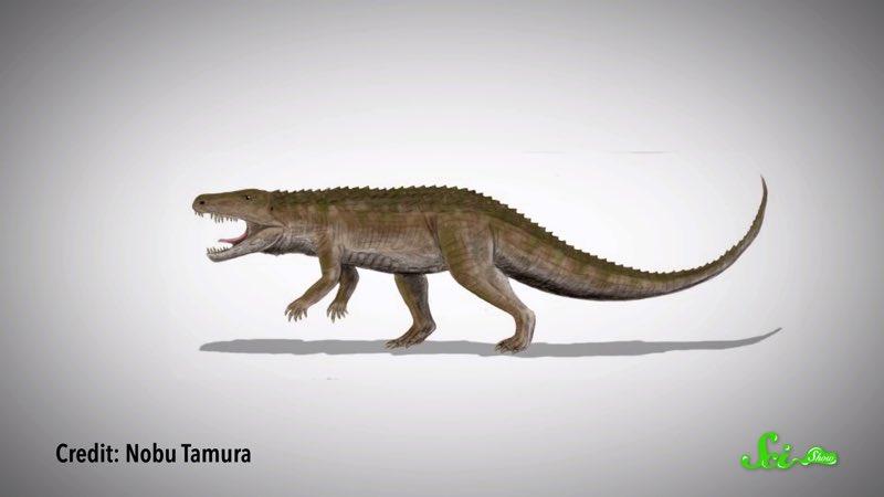 恐竜も、そうじゃない奴も 中生代に誕生したゆかいなフレンズたち
