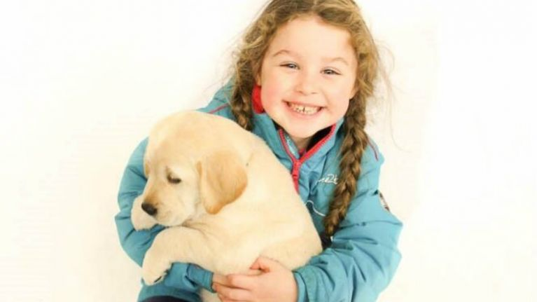 A dream come true for many families\u0027 8 autism assistance pups are